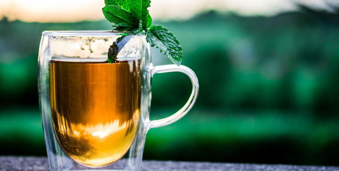 doppelwandige Teegläser im Test